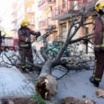 Protecció civil manté l'alerta per forts vents fins dimarts al matí