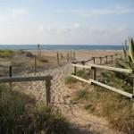 Jornada de neteja de la Campanya Internacional 'Clean up the Med' a L'Espai Natural dels Muntanyans de Torredembarra