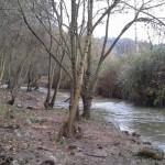 La llera del riu Gaià, al Pont d'Armentera, sanejada