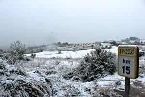 A partir dels 150 metres, la neu ha agafat al Tarragonès. Foto: Tarragona21