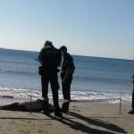 Troben un dofí mort a la platja de la Pineda