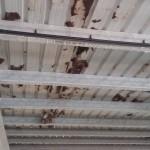 En un any el CN Tarraco recull la meitat del que costa canviar el sostre de la piscina