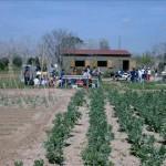 El taller dels fanalets i l'excursió a l'hort de la Sínia marquen el cap de setmana a Altafulla