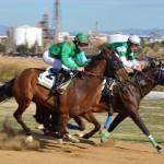 Vila-seca viu una gran jornada de curses de cavalls