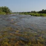 Constantí i l'Associació Aurora signen un acord de custòdia del riu Francolí