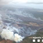 L'incendi de la Pobla de Montornès esdevé devastador amb 225 hectàrees cremades i 19 evacuats
