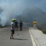 Controlat un incendi de la Selva del Camp