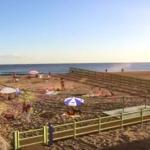 Reivindiquen un model d' ordenança per a gossos com el de Barcelona per a les platges tarragonines