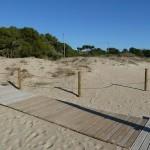 Convocatòria Jornada de Voluntariat Ambiental a la platja Llarga de Tarragona