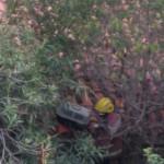 Rescaten un gat d'un terrat de Tarragona després de tres dies i de mobilitzar Bombers i Mossos