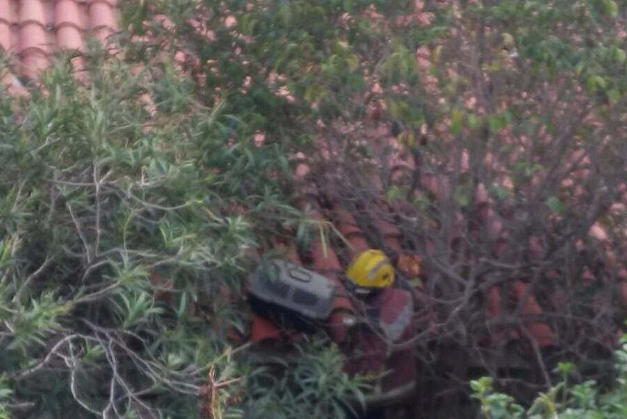 Els Bombers, enfilats al terrat de l'edifici per intentar rescatar el gat. Foto: Cedida