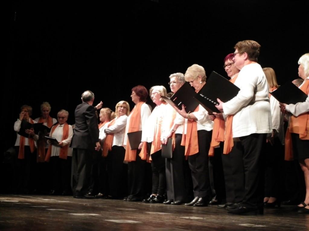 Actuació de l'Associació de Jubilats i Pensionistes de Torredembarra. Foto: Romà Rofes / Tarragona21.cat