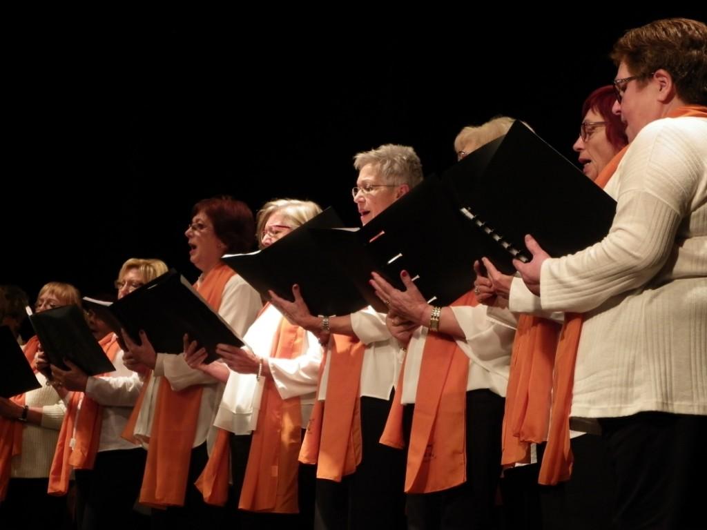Membres de l'Associació de Jubilats i Pensionistes de Torredembarra actuant a la trobada del Tarragonès. Foto: Romà Rofes / Tarragona21.cat