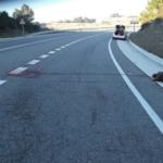 Cada any hi ha més de 200 accidents amb senglars al Camp de Tarragona: on i com son, i quan es pot reclamar