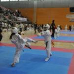 280 esportistes participaran al Campionat d'Espanya Infantil de Karate a Torredembarra