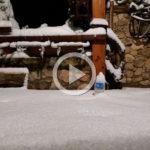 Recull de fotos i videos de la gran nevada que ha deixat més d'un pam de neu a Prades i Siurana