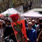 Prop de 200 parades, recepció a escriptors, regals de poemes, lectures públiques… Arriba Sant Jordi