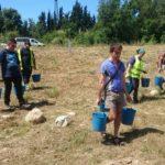 Unes 150 persones ajuden a salvar el Francolí