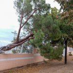 El fort temporal malmet la piscina de La Pobla