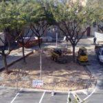 Comencen les obres de renovació de la Plaça del Castell de Constantí