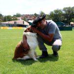 La calor marca el XXXI Concurs de Gossos d'Atura de Prades