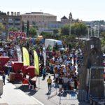La Festa de l'Esport de Torredembarra serà el proper 28 d'octubre