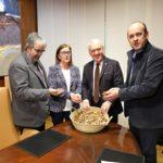 L'escalfament d'edificis municipals amb biomassa forestal, impulsat per la Diputació de Tarragona, serà una realitat el 2020
