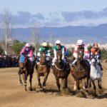 Diumenge, cavalls i nou element del seguici a Vila-seca