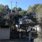 Altafulla obre de nou el servei de barbacoes a l'Ermita de Sant Antoni