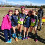 El Club d'Atletisme de Vila-seca destaca al100è Campionat de Catalunya de Cros