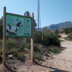 El GEPEC protegeix més de 4.000 hectàrees de territori de l'àliga cuabarrada al Camp de Tarragona