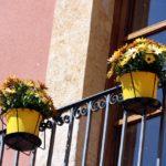 El Catllar canvia la pancarta de suport als presos per flors grogues als balcons de l'Ajuntament