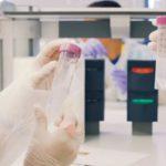 El congrés de recerca científica escolar Recerkids arriba dimarts a Tarragona
