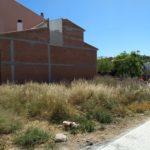 El Morell engega una campanya per mantenir nets patis i solars