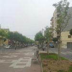 Cambrils reposa l'arbrat de l'avinguda Vidal i Barraquer