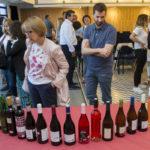Onze cellers de la DO Tarragona recullen els premis del XXVè Concurs de Vins