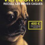 Mont-roig comença una campanya per combatre l'incivisme dels propietaris de gossos