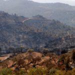Els bombers passen «de la defensa a l'atac» per «matar» l'incendi de la Ribera d'Ebre «en les properes hores»