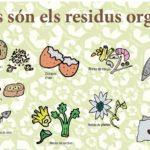 Torredembarra inicia el canvi de contenidors de l'orgànica per a la ciutadania