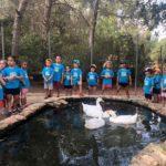 El Casal d'Estiu del Morell, diversió i aprenentatge per a més d'un centenar d'infants