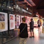 Obre l'exposició de fotografies científiques de la URV al Mercat Central de Tarragona