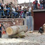 Arriba la novena edició de Prades Bosc aquest cap de setmana
