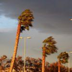 L'Ajuntament de Tarragona activa l'alerta pel fort vent