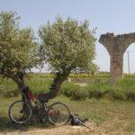 Munten una ruta cicloturística centrada en l'oli del Baix Camp