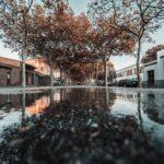 Pau Ventura recull el premi de la tercera edició del concurs fotogràfic