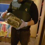 Desmantellada una plantació de marihuana dins d'una casa de Roda de Berà