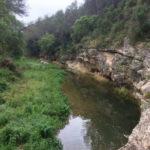 Incrementen el cabal de sortida des de la presa del Catllar per recuperar el riu Gaià des del punt de vista ambiental
