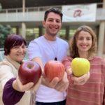 Menjar una poma al dia redueix el risc de patir malalties cardiovasculars