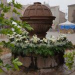 Prades cancel·la la tradicional Festa de la Farigola i la resta d'actes de maig