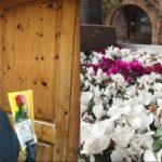Prades reparteix 600 flors i 350 roses als veïns del municipi